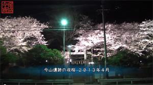 夜桜 - 今山遺跡(福岡県福岡市西区横浜)